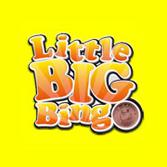 Little Big Bingo