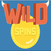 Wild Spins Casino