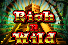 Rich n Wild Slot