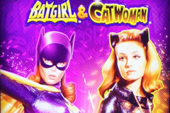 Batgirl & Catwoman
