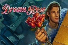 Dream Rose