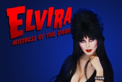 Elvira Mistress of the Dark