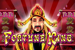 Fortune King Slot