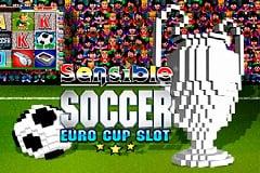 Sensible Soccer: Euro Cup