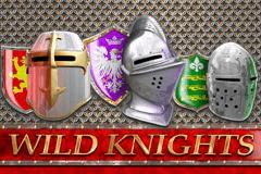 Wild Knights Slots