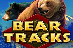 Bear Tracks Slot Machine