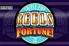 Reels of Fortune: Triple Pay Slot
