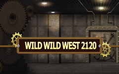 Wild Wild West 2010 Slot