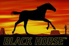 Black Horse™