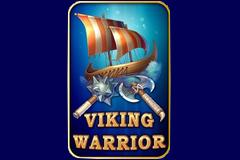 Viking Warrior Slot
