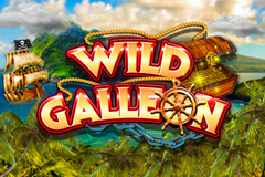 Wild Galleon Slot