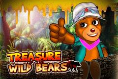 Treasure of the Wild Bears