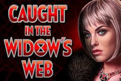 Caught in the Widow's Web Slot Machine