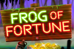 Frog of Fortune Slot