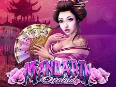 Mandarin Orchid