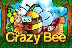 Crazy Bee Slot Machine
