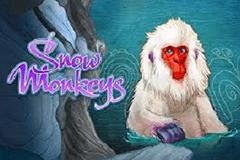Snow Monkeys Slot