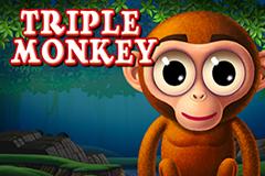 Triple Monkey Slot