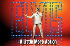Elvis A Little More Action Slot