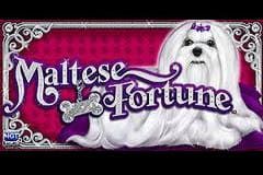 Maltese Fortune