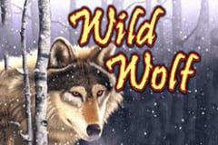 Wild Wolf Slots
