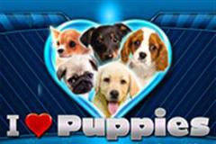 I Heart Puppies Slot