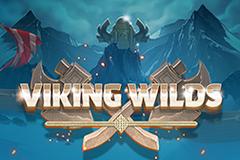 Viking Wilds Slot Machines