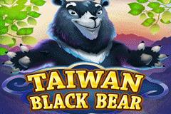 Taiwan Black Bear Slot
