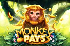 Monkey Pays Slot Machine