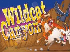 wildcat-canyon