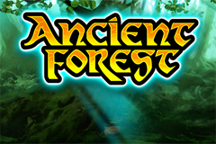 Ancient Forest Slot