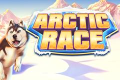 Arctic Race Slot