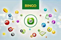 Bingo 37 Ticket