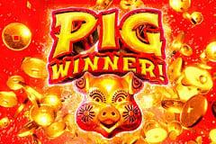 Pig Winner Online Online Slot