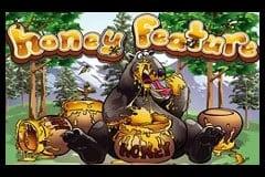 How to Play Bonus Bears Slots
