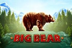 Big Bear Slot