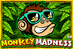 Monkey Madness Slot