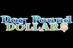 Dog Pound Dollars Slots
