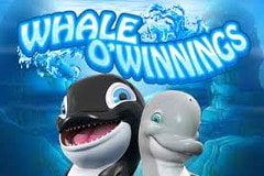 Whale O'Winnings