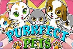 Purrfect Pets
