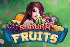 Sakura Fruits Slot Game