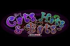 Cats, Hats & Bats