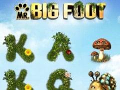 Mr. Big Foot