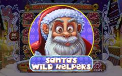 Santa's Wild Helpers