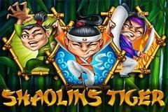 Shaolin's Tiger