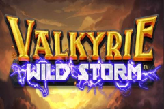 Valkyrie Wild Storm Slot Machine