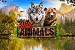 Wild Animals Slot Machine