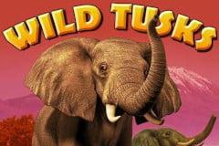 Wild Tusks Slot Machine