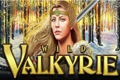 Wild Valkyrie Slot