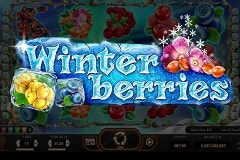 Winterberries Slots